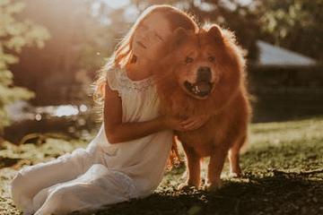 独一无二的狗狗名字母