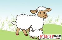 属羊的是哪年出生