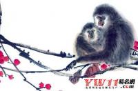 属猴的名人有哪些