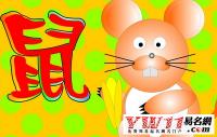 属鼠的名人有哪些